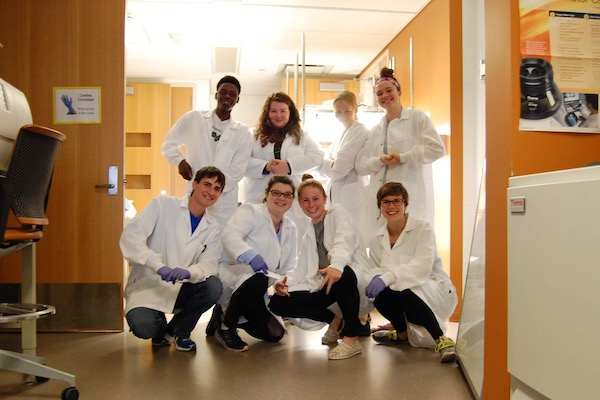 The MSU iGEM team